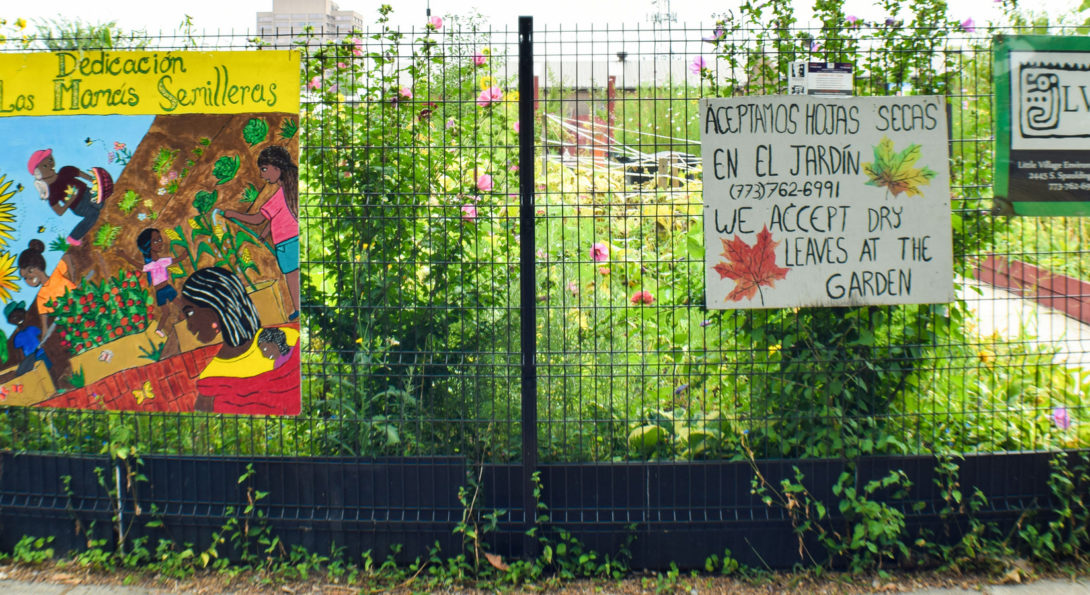 LVEJO community garden